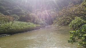 島だけど川がある